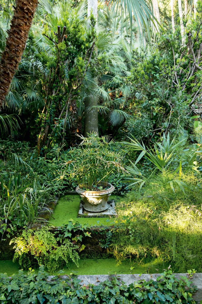 GartenAstor2