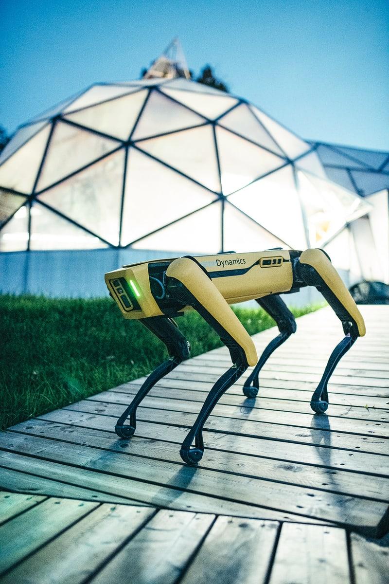 Roboter Hund Spot