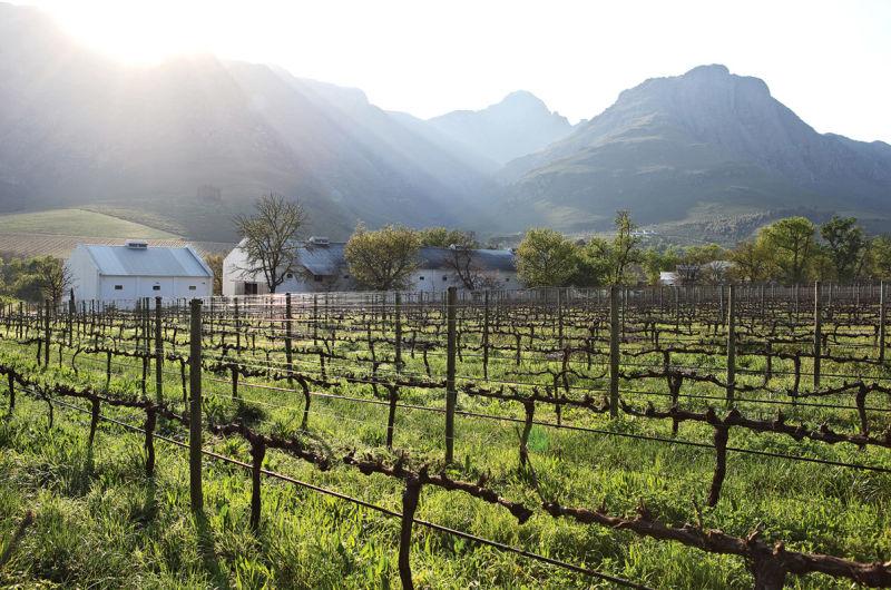 Another Day in Paradise: Über den Bergen von Stellenbosch oben geht eine strahlende Sommersonne auf.