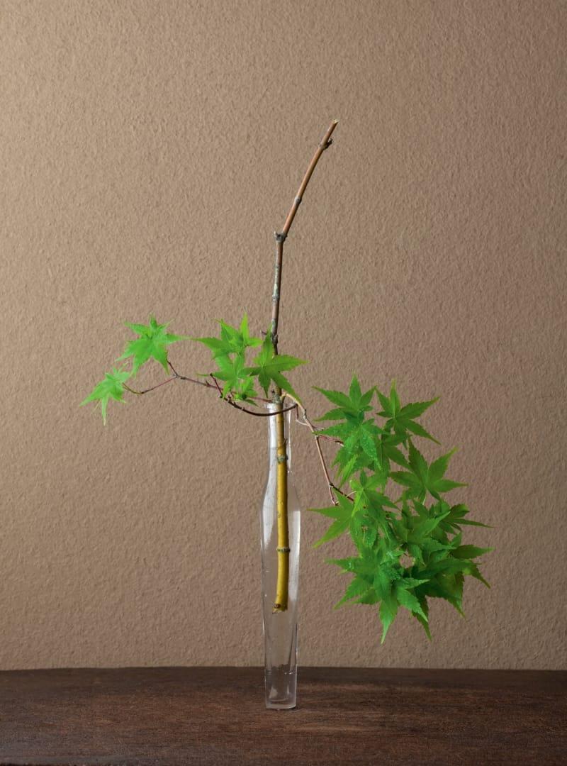 6 Ikebana