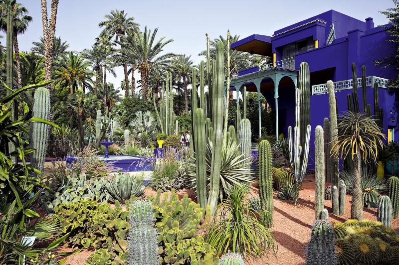 Marrakesch – Jardin Majorelle