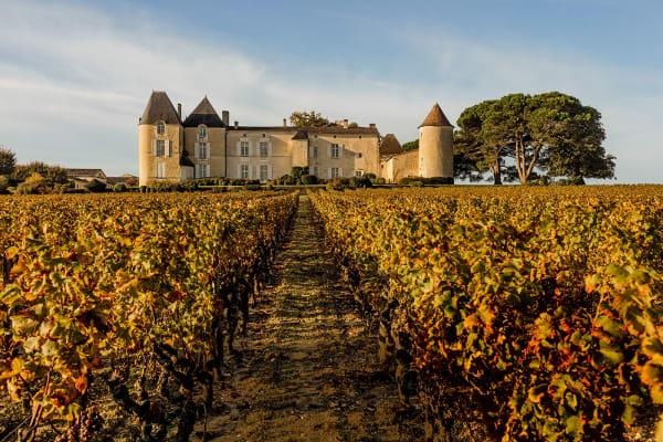 Auf den Weinbergen: Das Château d'Yquem mit seinen Türmen und        Mauern aus dem 17. Jahrhundert ist heute im Besitz von Bernard Arnault.