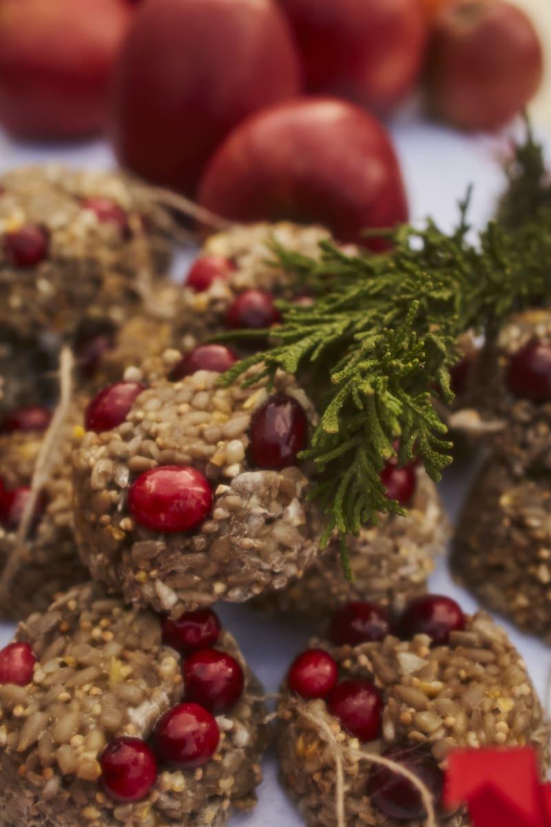 Meisenmuffins mit Cranberries