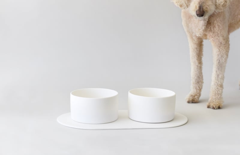 Hundenapf Pet Bowl von Tina Frey Designs