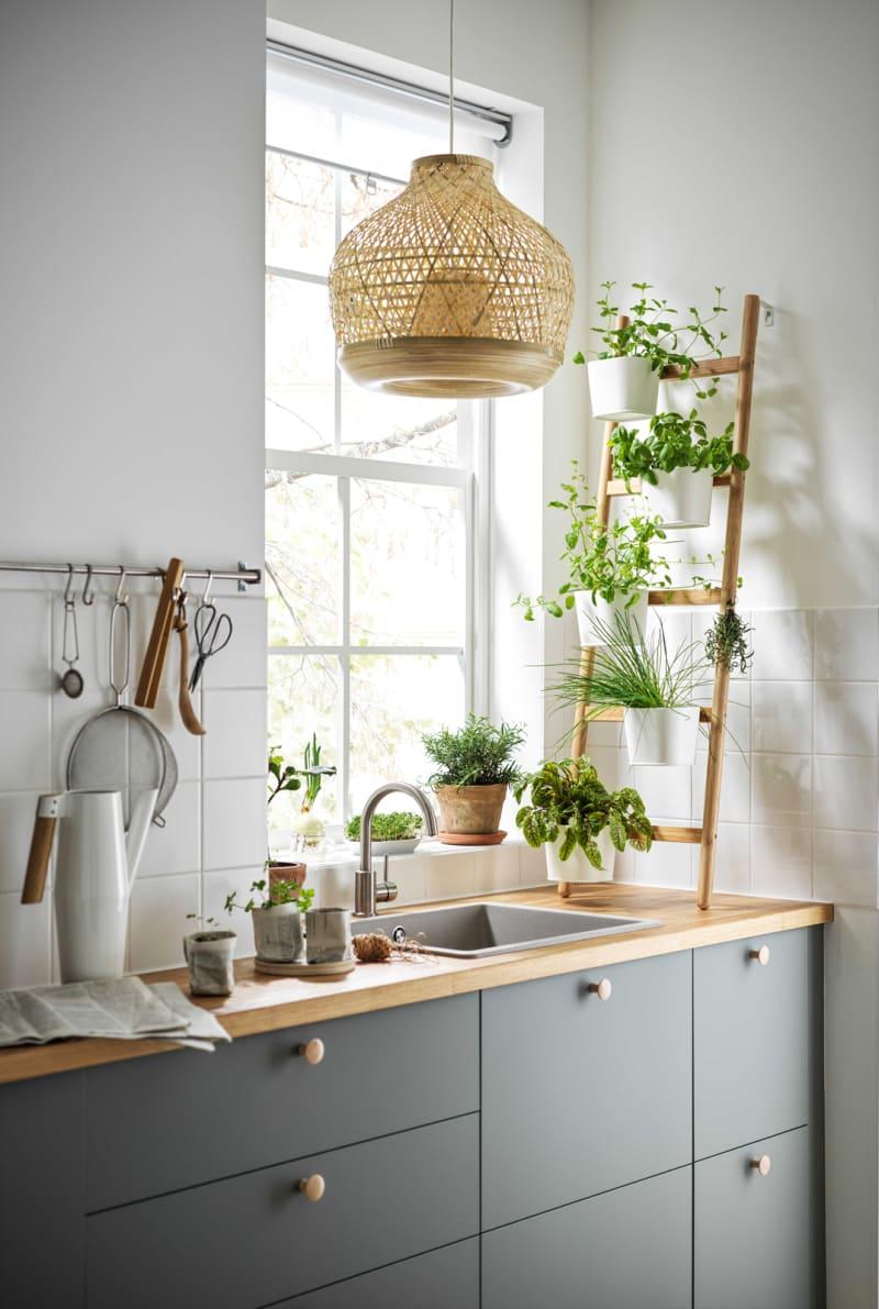 Für Kletterpflanzen
