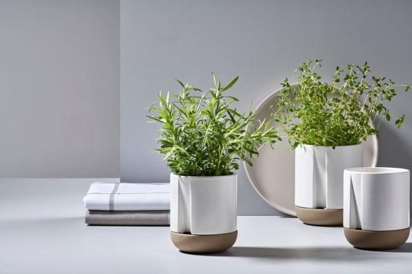 """Staunässe ist Gift für alle Kräuter! In den integrierten Untersetzern der Töpfe """"Herb&Sprout"""" von Zone Denmark bleibt der Wasserspiegel stets im Blick, ab 25 Euro."""