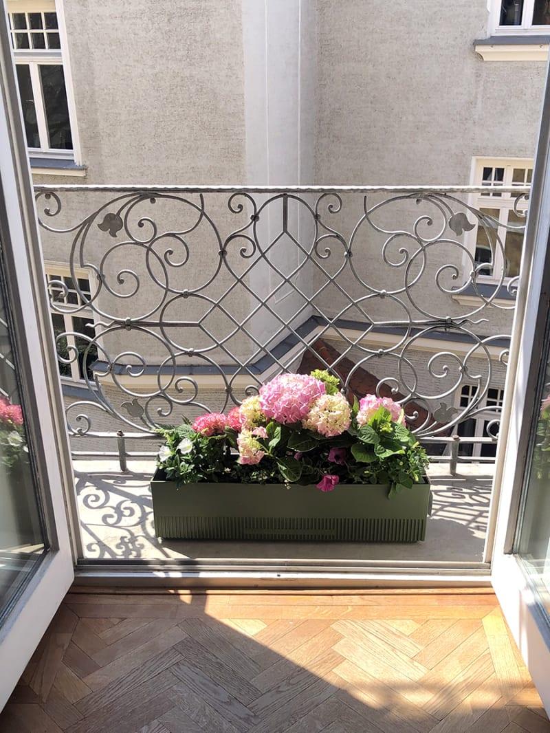 The Plant Box