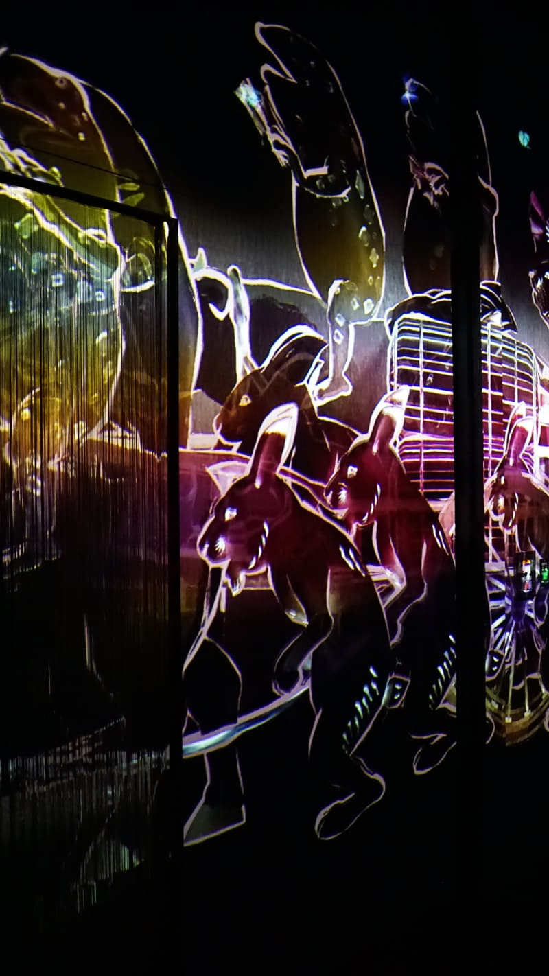 "Ausstellung ""Borderless""  TeamLab in Tokios Digital Art Museum"