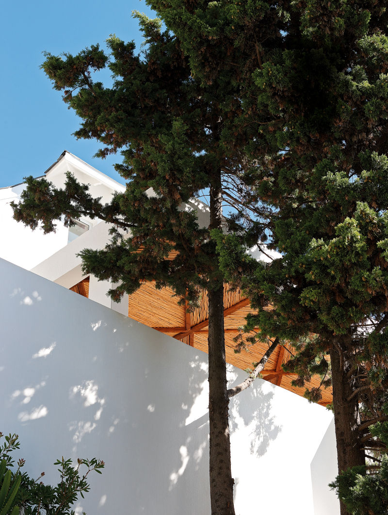 Hochsitz Kapstadt Bäume
