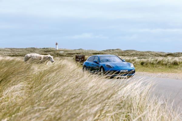 """Im Naturschutzgebiet  lässt sich der """"Panamera Sport Turismo"""" gern auch mal ganz leise fahren, vorallem in der hier gezeigten Hybrid-Version. Blitzschnell ist man auf Wunsch wieder jenseits der Schallgrenze, dann  gehören die Sylter Dünen wieder dem Schaf allein. Verkaufsstart ist im Oktober, die Preise beginnen bei knapp 100000 Euro."""