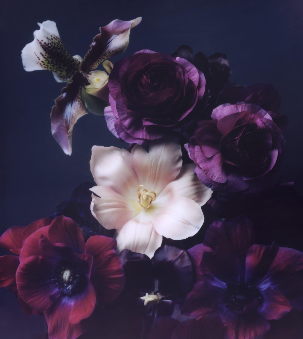 Mary Lennox, Florist Berlin