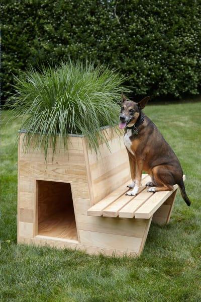 Estudio Ramos realisierte die begrünte Hundehütte mit Gartenbank gemeinsam mit Bulgin & Associates. Eröffnungsgebot 1000 Dollar.