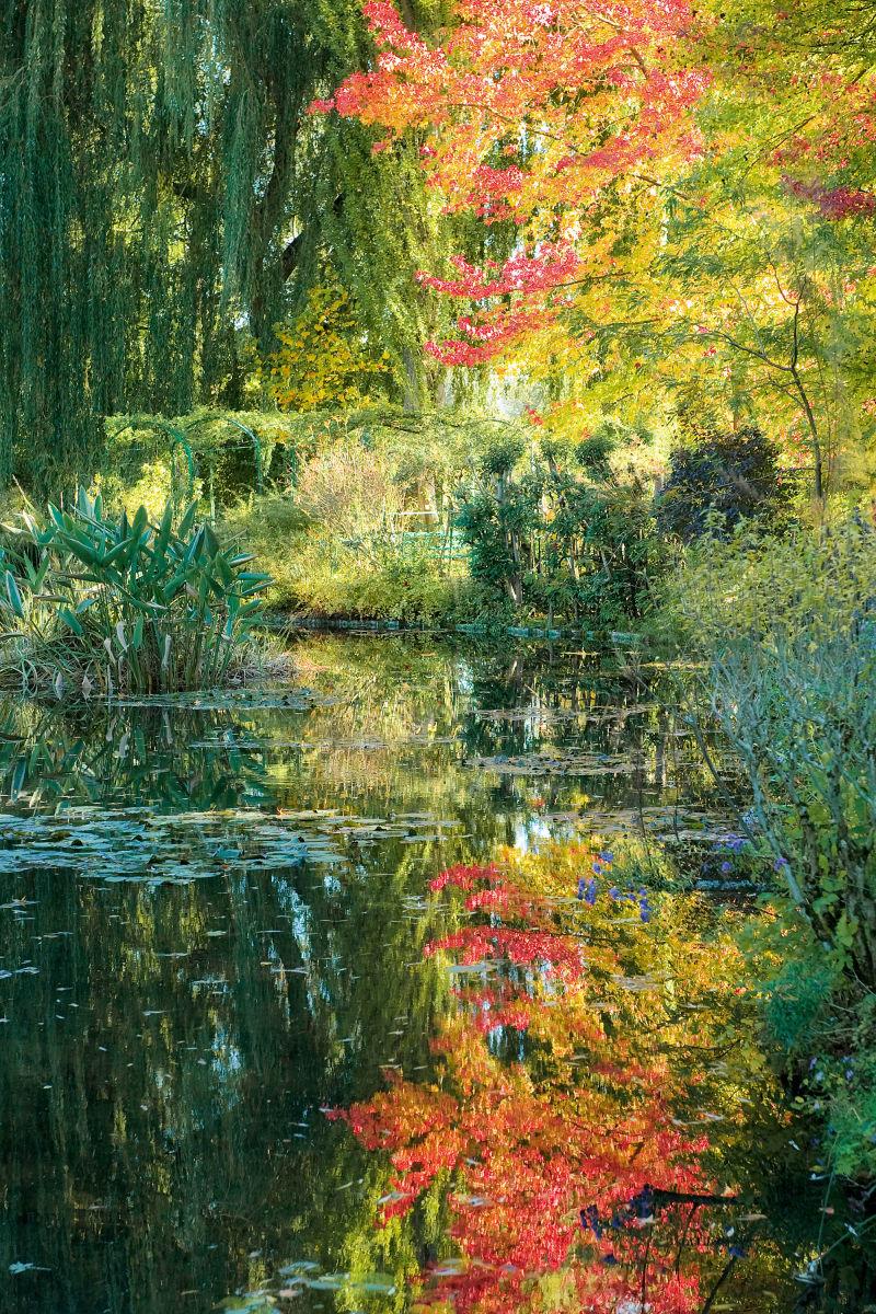 Claudes Garten