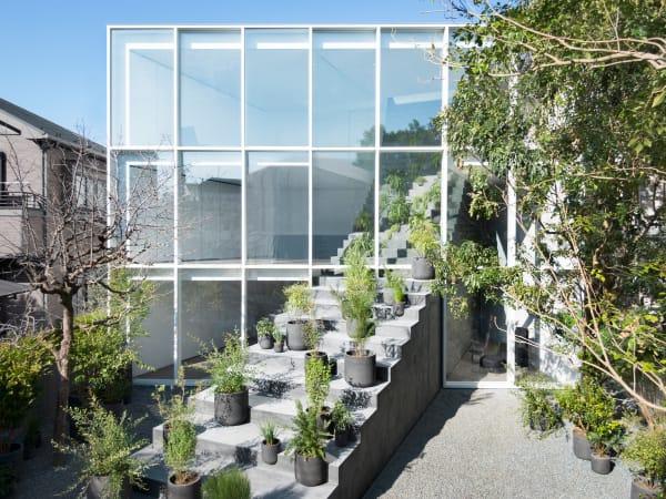 Das Haus öffnet sich in den großzügigen Garten. Auch die Treppe selber ist einem Gewächshaus ähnlich.