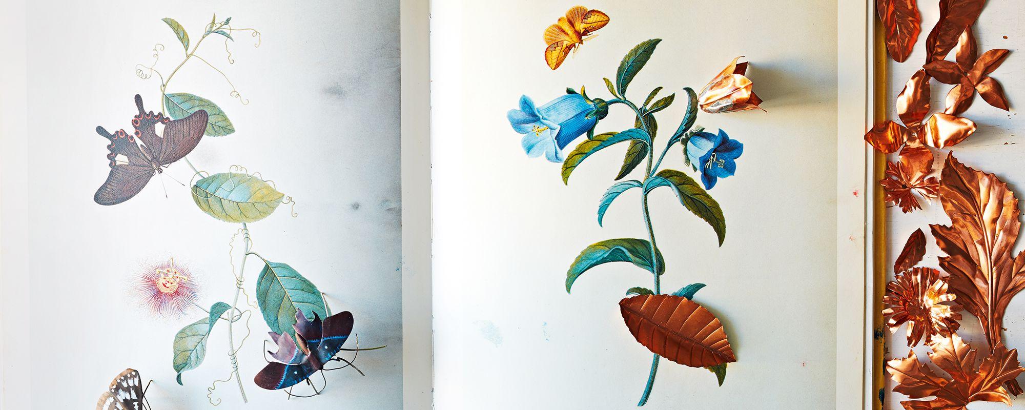 Carmen Almon, Botanical Art