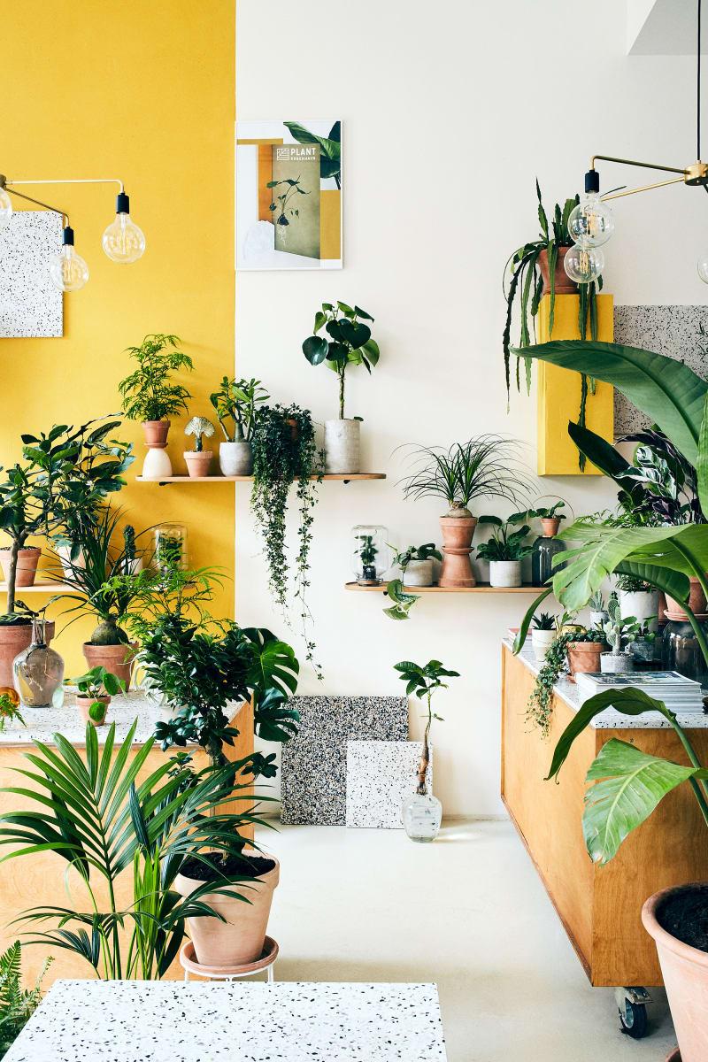 Plant København