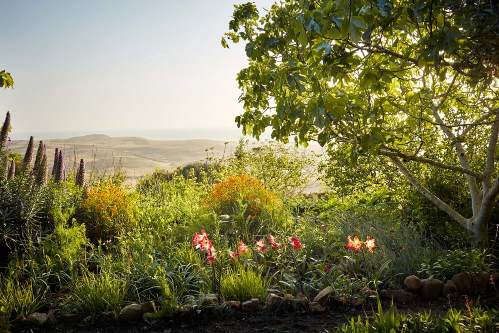 Der marokkanische Garten von Schriftsteller Umberto Pasti
