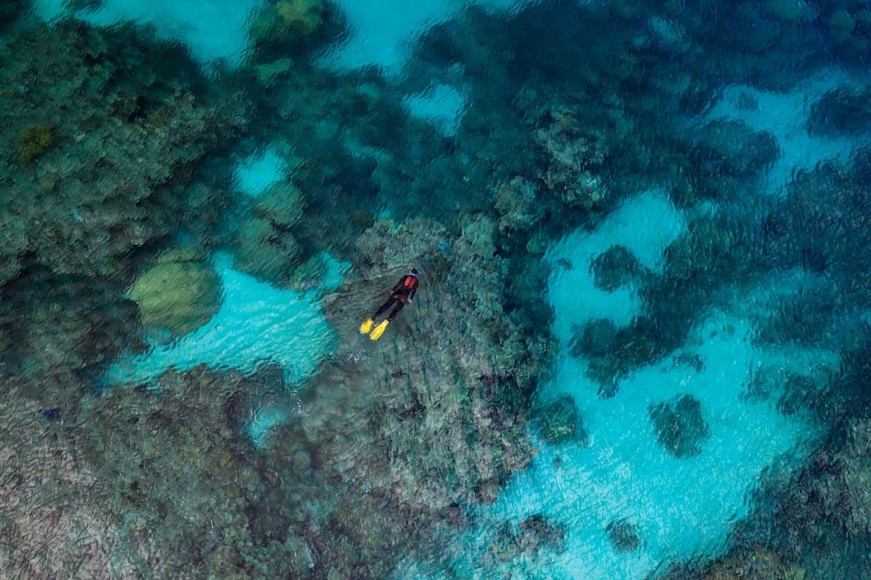Dokumentarfilm Ausschnitt von Taucherin im Great Barrier Reef