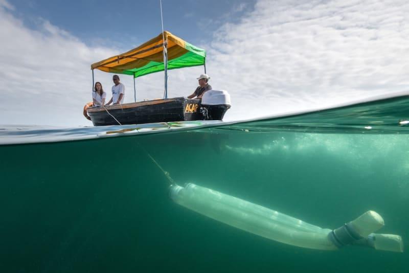 Rolex Doku Kerstin Forsberg Forschungsboot