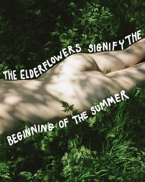 Wenn Sie es nicht mehr erwarten können in der Sonne zu liegen, bringt die Holunder-Körperserie sommerliche Frische in Ihr Bad.