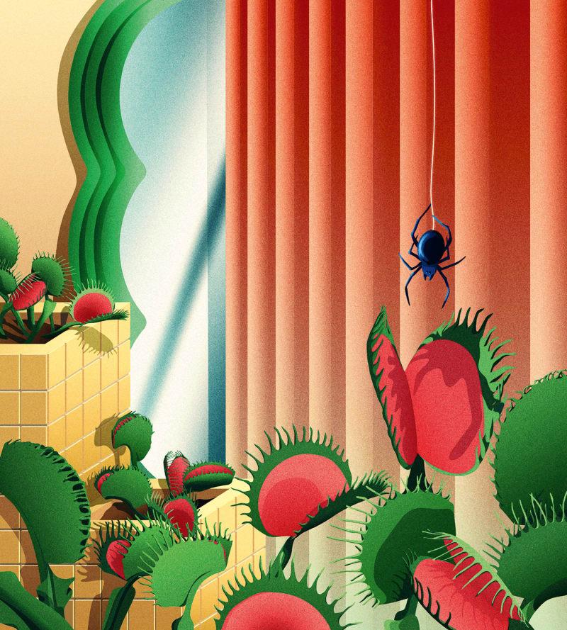 Die Venusfliegenfalle