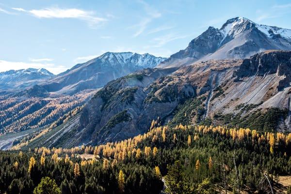 Das wilde Val S-charl südlich von Scuol ist die Heimat des uralten Arvenwaldes von Tamangur. Seit Mitte des 20. Jahrhunderts steht das Gebiet unter Schutz, 2007 wurde es zum Naturwaldreservat erklärt. Hin kommt man nur zu Fuß – von Norden über S-charl oder aus südlicher Richtung von Lü oder dem Ofenpass.
