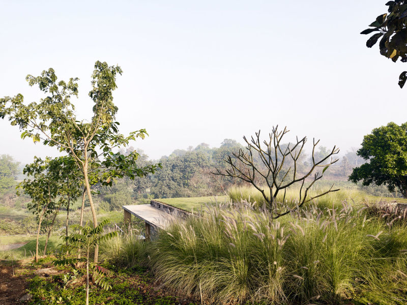 Architecture-BRIO_The-Riparian-House_Karjat-India__08-green-roof-at-sunrise