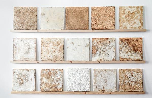 Fliesen aus Pilzen: Die Bandbreite ihrer Oberflächen ist gewollt; die Akustikplatten, die bald auf den Markt kommen, werden einheitlich aussehen.