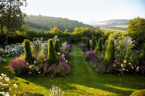 All green, all soft: Die Landschaft mit ihren von Sträuchern gerahmten Wiesen hat Blom auf Chalkland Farm mit überquellenden Rosenbeeten, Ziersalbei, Storchschnabel, Buchssäulen und Rasenflächen zum Gemälde verdichtet.