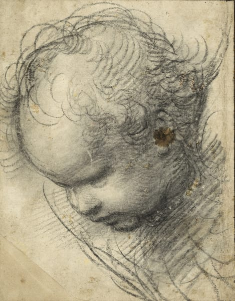 """Raffael, eigentlich Raffaello Santi oder Sanzio (1483–1520),   """"Kopf eines Cherubs"""", 1509   Kohle, 298 x 234 mm."""