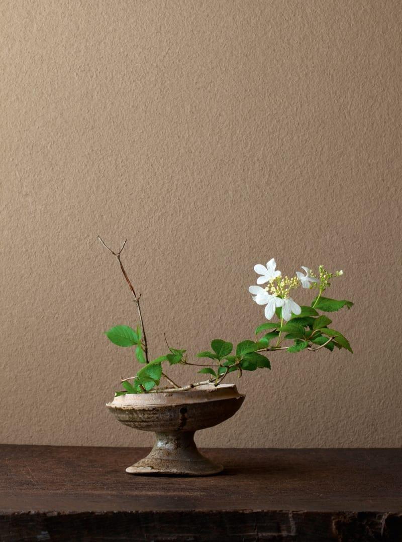 5 Ikebana
