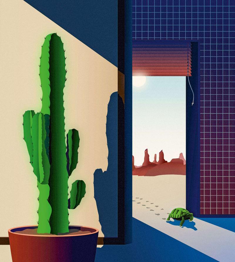 Die Kaktus-Wolfsmilch.