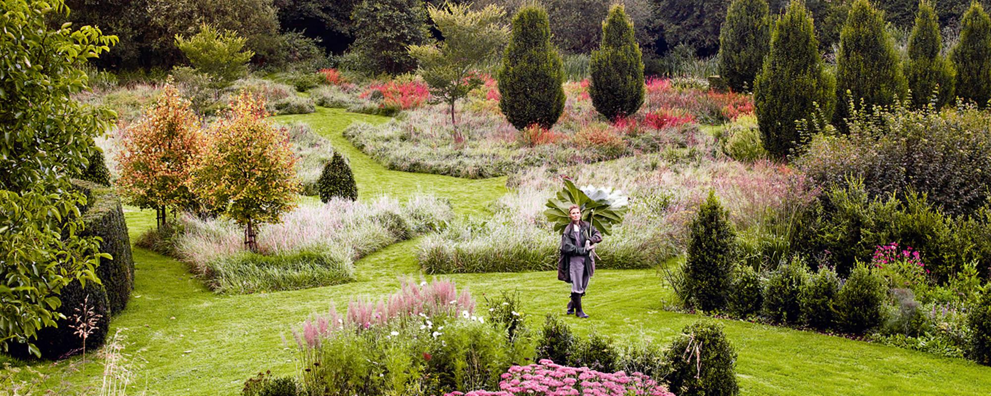 Tania Compton, Garten, Spilsbury, Natur