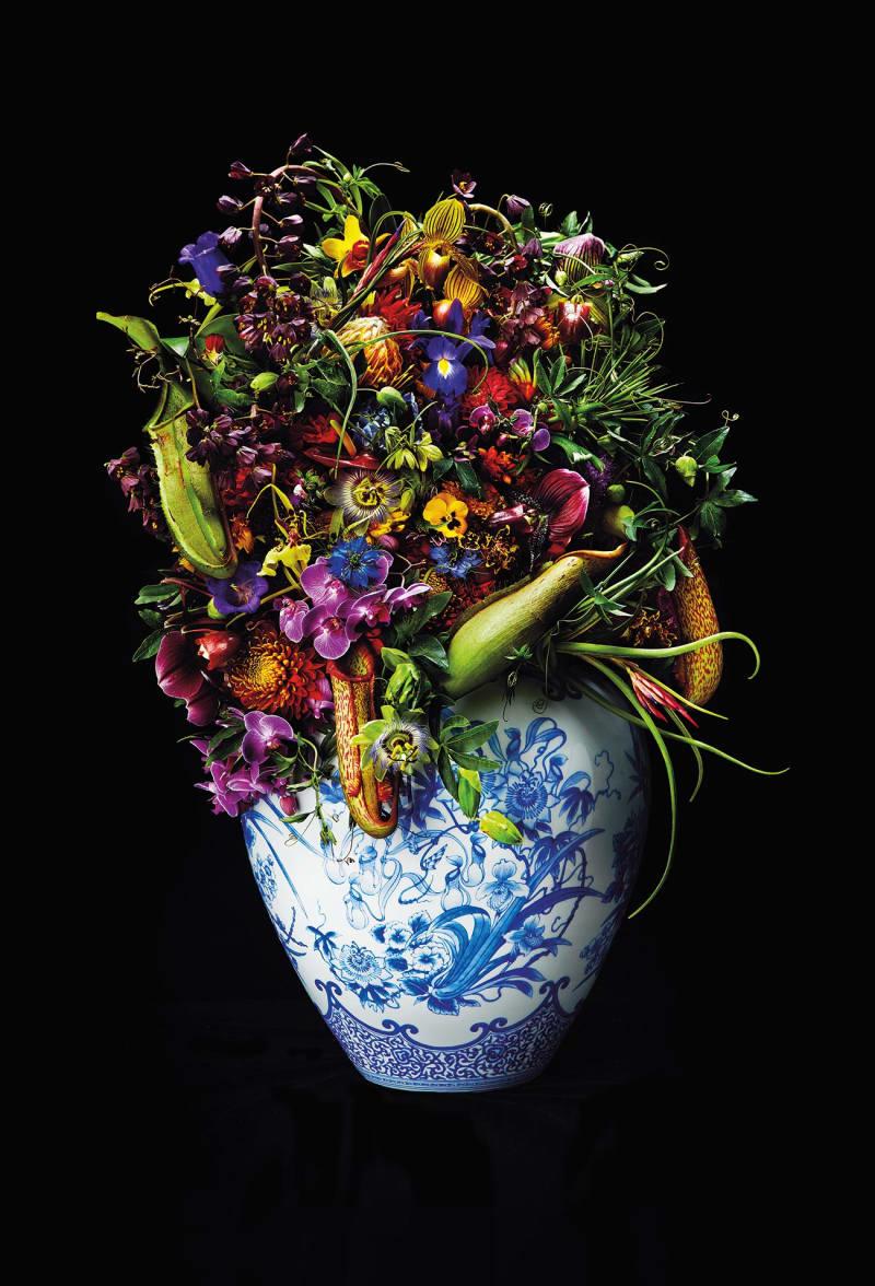 Azuma Makoto Blue Flower Rebellion
