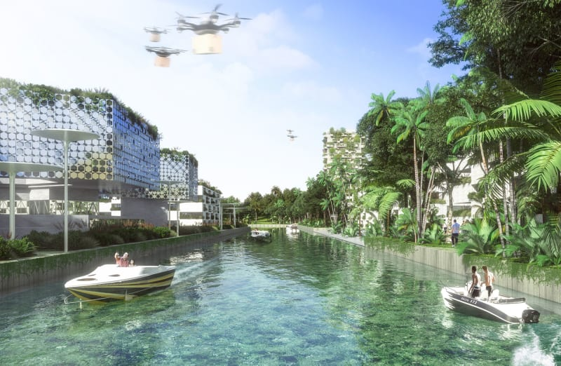 Forest City Cancun