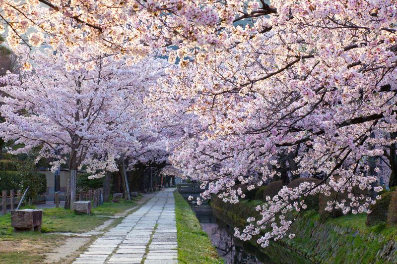 6. Kyoto, Japan