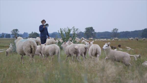 Friedrich von Borries hat mit Jakob Brossmann einen Kurzfilm über Folgenlosigkeit gedreht. (Filmstill)
