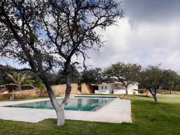 Pool und Poolhaus werden von den alten Olivenbäumen des Anwesens eingerahmt.