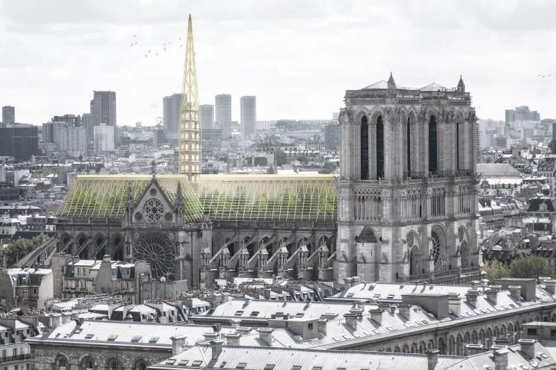 Notre Dame - wieder als Garten