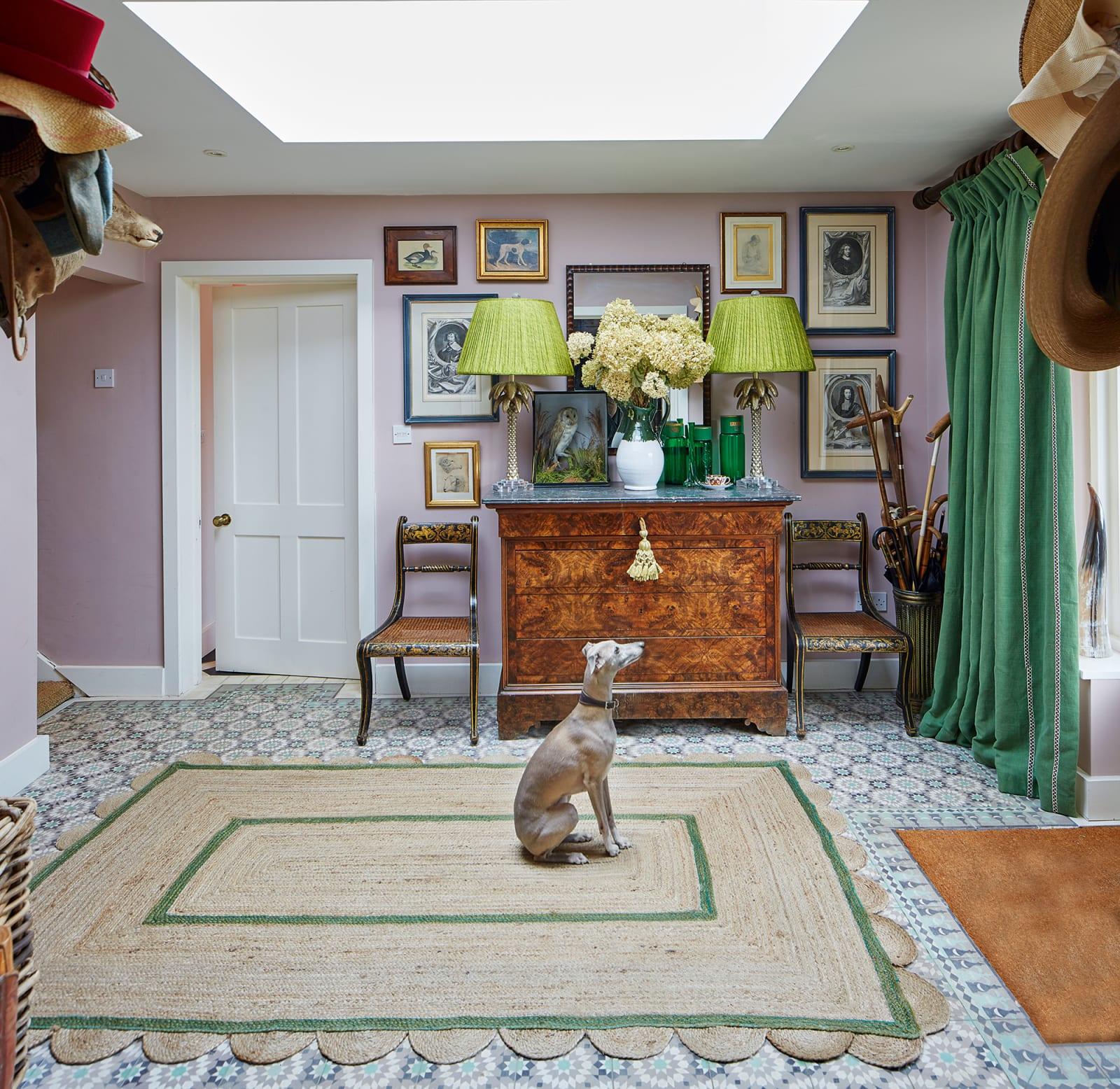 Studio - Haustiere