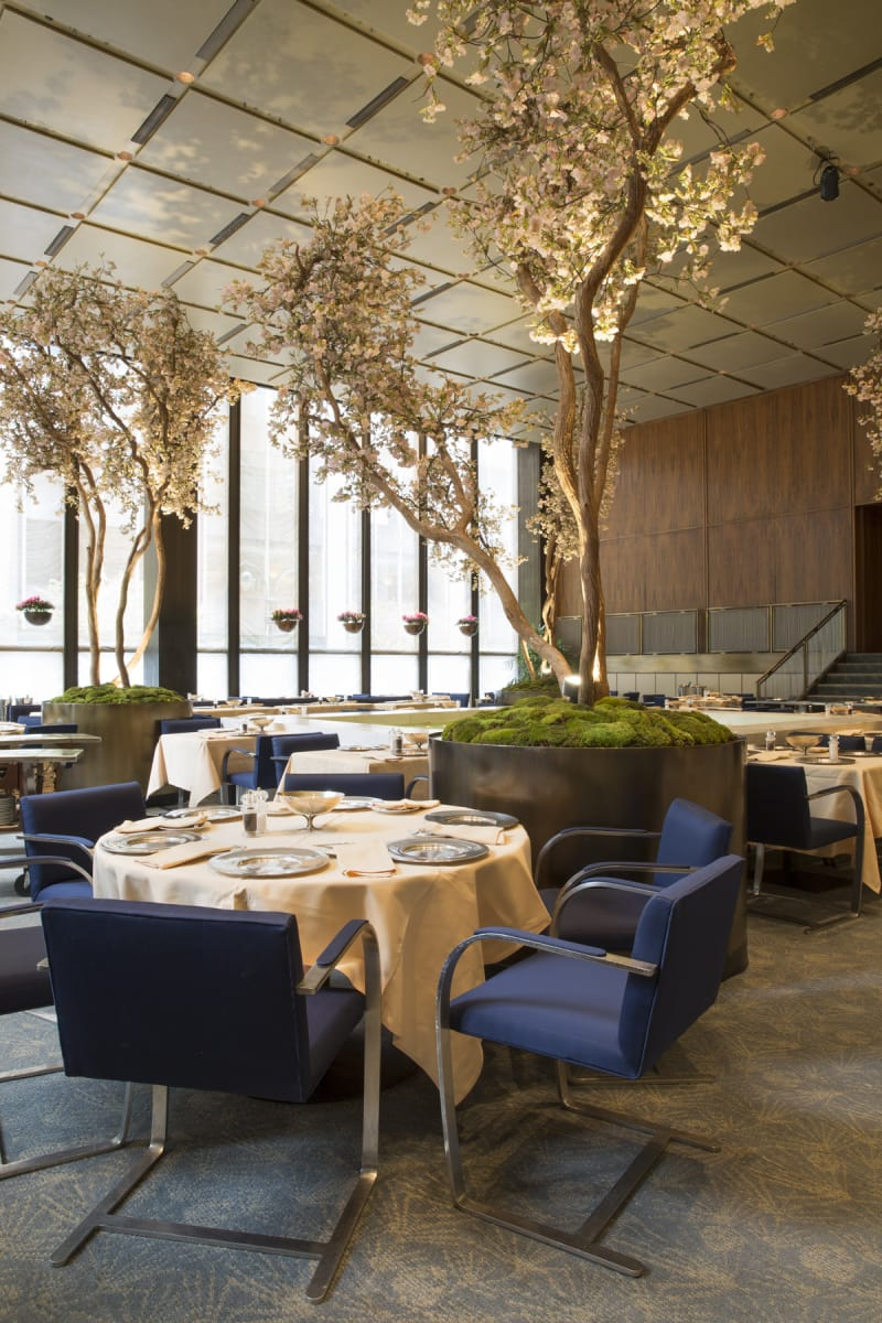 Four Seasons C