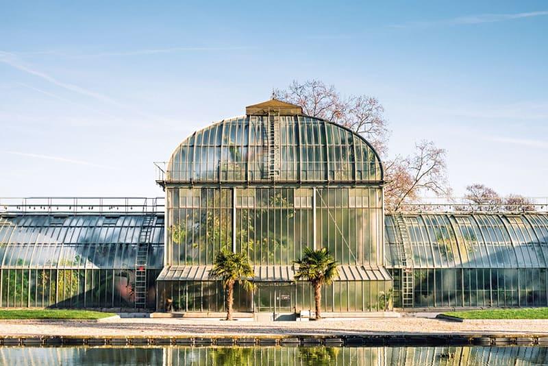 Palmenhaus A