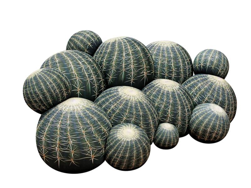 "6. ""Canapé Cactus"""