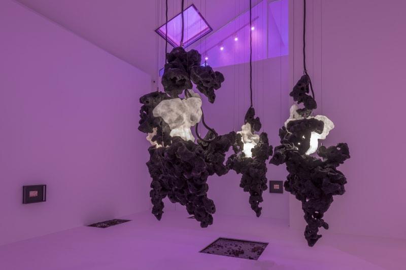 4. Galerie Max Hetzler, Loris Gréaud