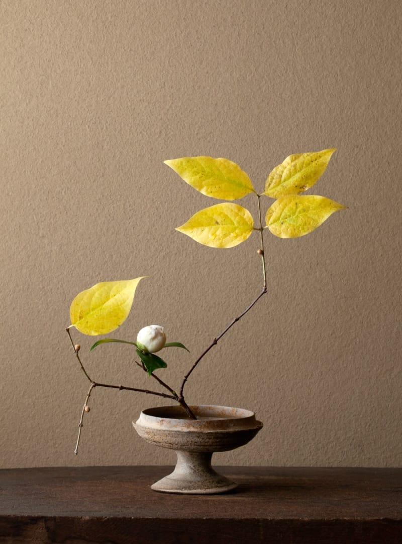 1 Ikebana