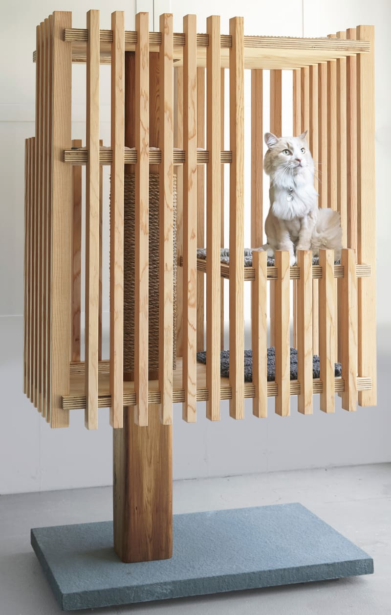 "7. Stelle Lomont Rouhani Architects, "" Purrrch"""