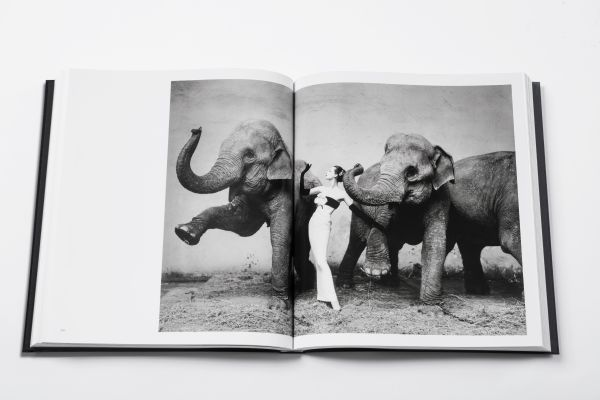 "Das Buch ""Dior by Avedon"""
