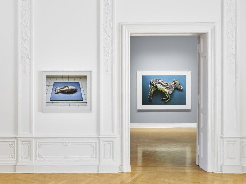 4. Galerie Max Hetzler