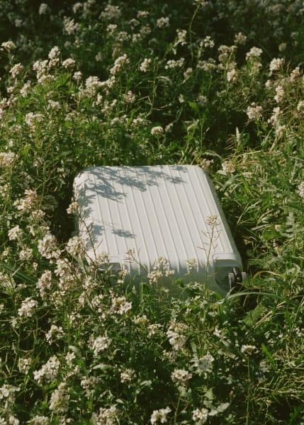 Ein Blumenfeld in der Nähe der spanischen Gemeinde Calaceite. – Mitten drin ein Koffer von Rimowa.