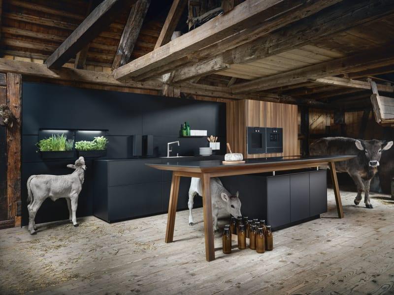 Ein tierisches Erlebnis in der Küche